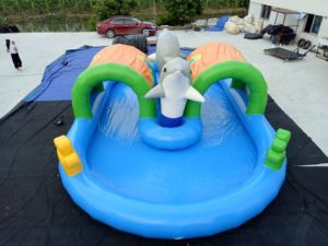 New Design Inflatable Dolphin Pool Water Park to Sale (RB30019) pictures & photos