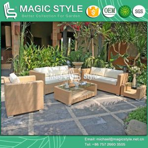 Rattan Sofa Set with Cushion 3-Seater Outdoor Sofa (Magic Style) pictures & photos