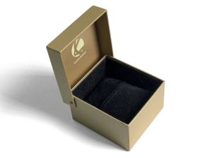 2015 High End Customized Popular Boutique Luxury Plastic Booklet Watch Box