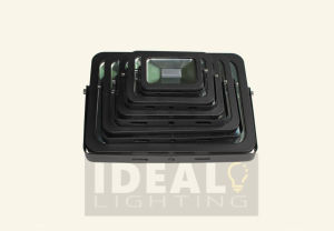 Outdoor AC LED Flood Light, 10-100W LED Flood Liglht pictures & photos