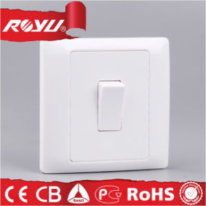 CE/Bs Certificate 10A 1 Gang Push Button Switch pictures & photos