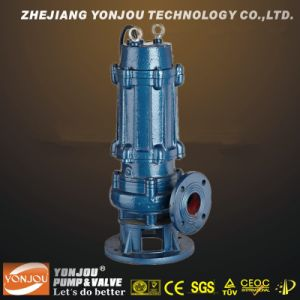 QW Series Submersible Sewage Pump pictures & photos