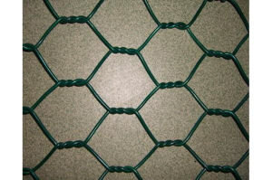 PVC Coating Hex. Mesh pictures & photos