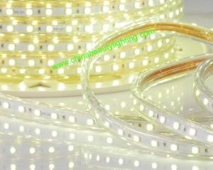 LED Lights 230V 110V Waterproof SMD ETL LED Strip Lights LED pictures & photos