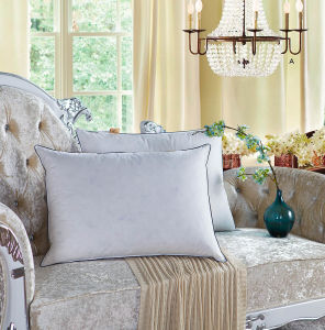 White Goose Down Pillow for Home pictures & photos