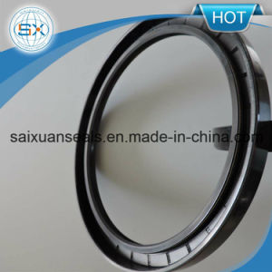 New Tc Framework Seal Rubber Seal Rotary Dust Proof Seal pictures & photos