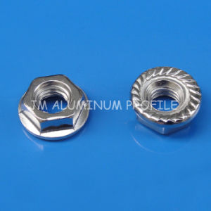 Flange Nut M8 Combine with Bolt pictures & photos