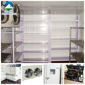 Cold Room Build for Meat Beef and Sea Food