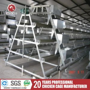 Steel Wire Mesh Brids Battery Chicken Layer Cages for Sale in Jordan pictures & photos