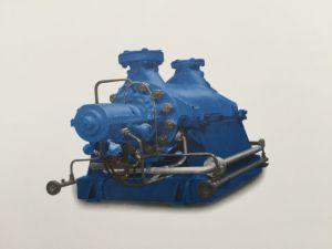 Cg Series Pressure Media Field Chemistry Multistagel Pump pictures & photos