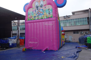 Lilytoys Commercial Sport Games Water Park Equipment Inflatable Slide for Sale pictures & photos