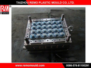 RM0301071 Plastic Bottle Cap Mould Supplier pictures & photos