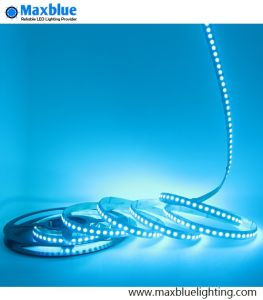 Single Row 120LEDs/M 5050 RGB LED Light Strip pictures & photos