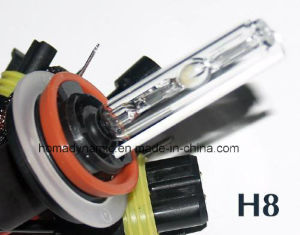 12V/24V 35W/50W H11 HID Xenon Bulb Super Bright Color Temperature 3000k-30000k pictures & photos
