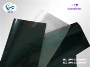 Manufacturer Low Price HDPE LDPE EVA Compound Geomembrane Texture pictures & photos