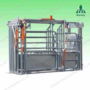 Powder Coated or HDG Cattle Squeeze Crate pictures & photos