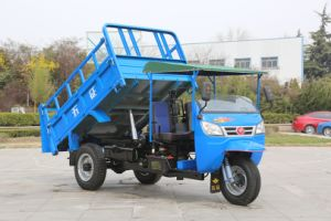 Waw 3 Wheel Truck (WE3B2523103) pictures & photos