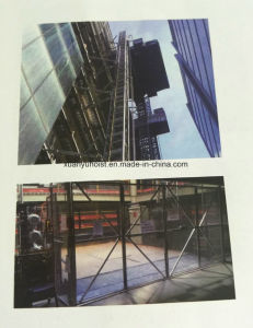 New Twin Mast Section Material Elevator Used for Big Vertical Transprotation