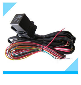 China Factory HID Realy Automotive Wire Harness for Car Light pictures & photos