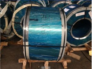 Stainless Steel Coils/Volumes Prime Quality pictures & photos