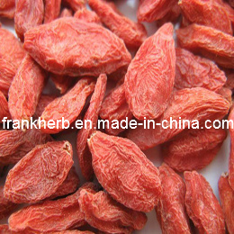 Organic Dried Goji Fruit (Wolfberry) pictures & photos