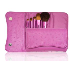 Small Travel Cosmetic Brush Makeup Brush (5PCS) pictures & photos