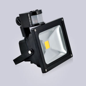 Wholesale Waterproof 6000 Lumens 50W LED Floodlight pictures & photos