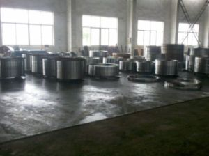 Forging Manufacturer China, Ring Forgings pictures & photos