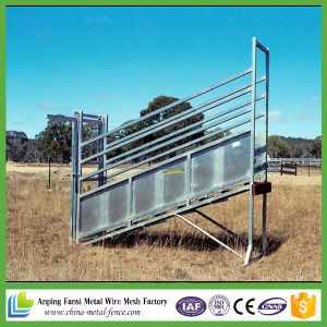 3m or 3.6m Cattle Load Ramp Hot DIP Galvanized pictures & photos