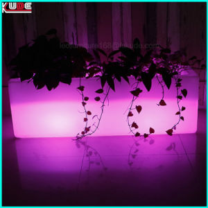 Ice Bucket with LED Lights Plastic Ice Bucket pictures & photos