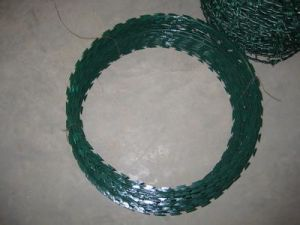PVC Coated Razor Barbed Wire in Best Price pictures & photos