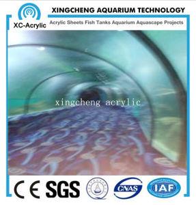 UV Transparent Oceanarium PMMA Tunnel pictures & photos