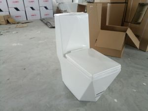 White Ceramic One Piece Sanitary Floor Stand Diamond Water Closet pictures & photos