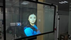 Self Adhesive Transparent Rear Projection Film/3D Holographic Shopwindow Display Film pictures & photos