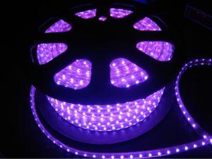 220V 110V SMD LED Strip Light White PCB Board Full Color Changing pictures & photos