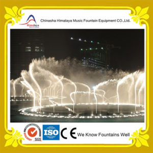 3 Dimensional Dancing Water Fountain with Digital Control
