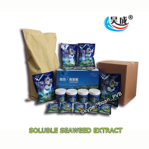 Soluble Seaweed Extract Powder for Plant Food pictures & photos