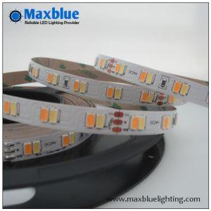 CCT Adjustable DC24V 112LEDs/M Dual White SMD5630 LED Strip pictures & photos