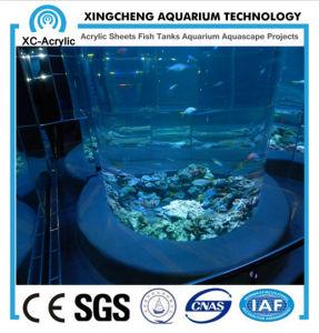 Large Round Acrylic Aquarium/Round Fish Tank/Round Glass Aquarium pictures & photos