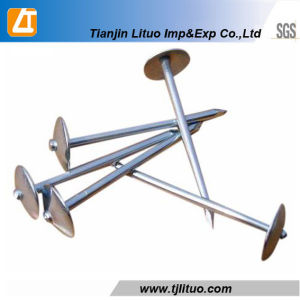 9g*2.5′′ Electro Galvanized Umbrell Roofing Nail pictures & photos