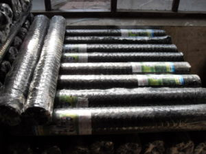 PVC Coated Chicken Mesh 1/2′′ pictures & photos