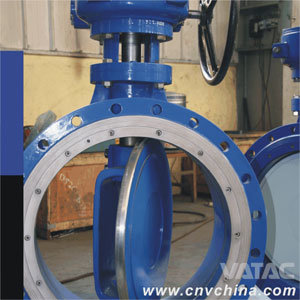 Awwa C504 Cast Iron/C. I/Ci Gg25 Wafer Butterfly Valve pictures & photos