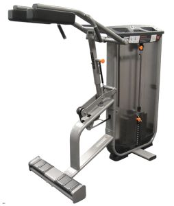 Commercial/Fitness/Fitness Equipment/Standing Calf