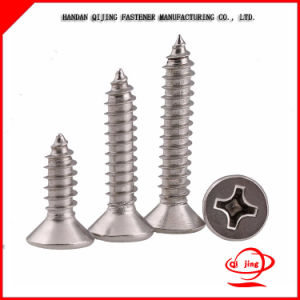 Galvanized Self Drilling Screw, Self-Drilling Screw pictures & photos