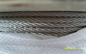 6.0mm7x19 Stainless Steel Strand Wire Rope and Cables
