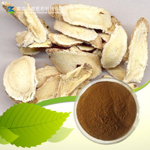 Astragalus Extract Astragalus Polysaccharide 50% pictures & photos