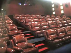 VIP Theatre Recliner Sofa pictures & photos