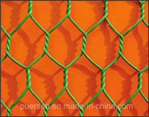 2015 China PVC Coated Iron Hexagonal Wire Mesh pictures & photos