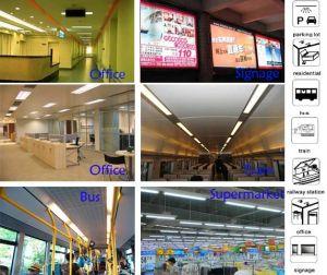 AC100-300V 2FT 4FT T8 10W 18W 360 Degree LED Tube Light pictures & photos