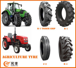 Bias and Nylon Tyre, AG Tyre, Backhoe Tyre, Tractor Tire